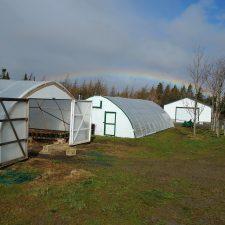 Ripple Trail Farm