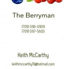 The Berryman